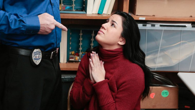 ShopLyfter Monica Sage in Case No. 0844962 1